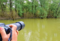 Shooting nature. Photo shooting a bird in the Danube Delta Biosphere Reserve. Danube delta is the second largest river delta in Europe Stock Photo