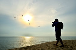 Shooting near the beach when sun rising Royalty Free Stock Image