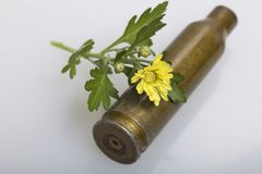 Shooting sleeve from a large-caliber machine gun and a yellow chrysanthemum flower. Establishment of peace. Shooting sleeve from a large-caliber machine gun and stock photo