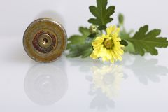 Shooting sleeve from a large-caliber machine gun and a yellow chrysanthemum flower. Establishment of peace. Shooting sleeve from a large-caliber machine gun and royalty free stock photos