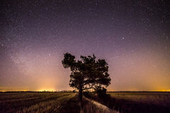 Shooting stars in countryside. Beautiful starlit sky and shooting stars in Finnish countryside in springtime stock photo