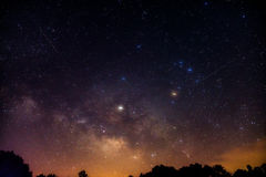 Shooting stars and Milky Way over the treetops. Two shooting stars at the Milky Way rises over the horizon stock images
