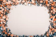 Frame of sea shells Royalty Free Stock Photo