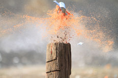 Shooting tin cans. Shooting full tin cans with high powered rifles royalty free stock images