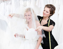 Shop assistant sets the veil of the bride. White background Royalty Free Stock Image
