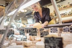 Shop clerk woman sorting cheese in the supermarket display stock image