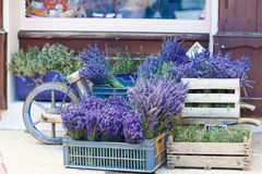 Shop in Provence decorated with lavender and vintage things. Stock Images