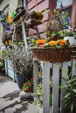 A shop selling flower in the market in Budapest royalty free stock images