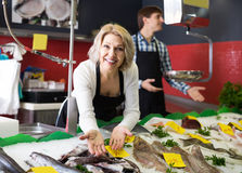 Shop stuff selling chilled on ice fish in supermarket. Positive shop stuff selling chilled on ice fish in supermarket stock photography