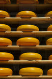 Shop window full of round Dutch cheeses, Delft, Netherlands Royalty Free Stock Photo