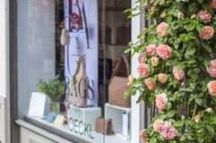 Shop windows and flowers in Zurich. royalty free stock images