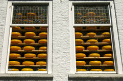 Shop windows full of round Dutch cheeses, Delft, Netherlands Royalty Free Stock Photos