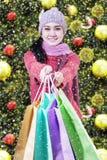 Shopaholic que da los panieres Imágenes de archivo libres de regalías