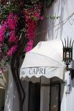 Shopfront遮篷&九重葛在卡普里,意大利 免版税图库摄影