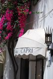 Shopfront markis & bougainvillea i Capri, Italien royaltyfri fotografi