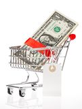 Shoping cart with money. US Dollars wrapped with a red satin ribbon with an attached price tag in a shoping cart isolated on whitebackground Royalty Free Stock Photos