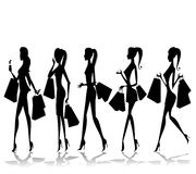 Shoping Girls -  illustration Stock Image