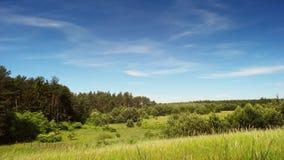 Shoping keyBeautiful meadow time lapse. Summer in full HD stock footage