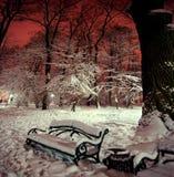 Shoppa i det insnöat en parkera i vinternatt Arkivbilder
