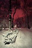 Shoppa i det insnöat en parkera i vinternatt Arkivfoton