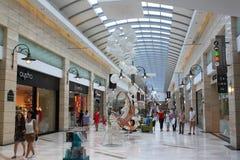 Shoppa i fullsatt galleria Royaltyfria Foton