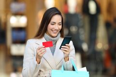 Shopper holding shopping bags paying on line Royalty Free Stock Photo