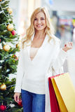 Shopper with paperbags Royalty Free Stock Image