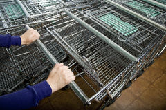 Shopper's Hands Selecting a Shopping Cart royalty free stock photos
