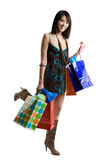 Shopping asian woman Royalty Free Stock Image