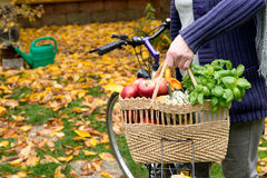 Shopping bag with bicycle Royalty Free Stock Image