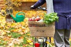Shopping bag with bicycle Royalty Free Stock Photo