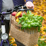Shopping bag with bicycle Stock Images