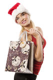 The shopping bag girl in christmas Stock Photos
