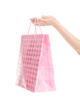 Shopping bag in hand Royalty Free Stock Image