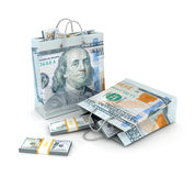 Shopping bags with dollar money Stock Photography