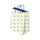 Shopping bags  illustration. Set of Colorful Empty Shopping Bags Isolated  set. Shopping bags fashion design store merchandise handle package. Colorful paper Royalty Free Stock Image