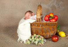 Shopping basket with baby. Shopping basket with a sleeping little baby of 18 days old Royalty Free Stock Image