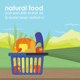 Shopping basket full of healthy organic Royalty Free Stock Photos