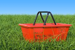 Shopping basket on the green grass against blue sky, 3D renderin. Shopping basket on the green grass against blue sky, 3D Royalty Free Stock Photography