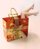 Shopping capacity. Shopping conceptual photo with woman's legs in the bag Stock Image