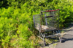 Shopping cart abandoned in a park Stock Photos