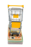Shopping cart on bills. Shopping cart stands on banknotes, symbolic photo for shopping, purchasing power, money printing and inflation Royalty Free Stock Photos