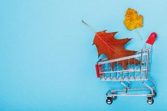 Shopping cart on blue background with copy space. Autumn sales concept stock images