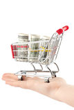 Shopping cart and dollars Royalty Free Stock Photos