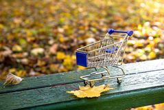 Shopping cart in the fall royalty free stock photo