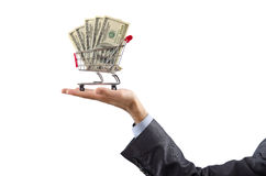 Shopping cart full of money Stock Image