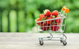 Shopping cart full of ripe red strawberries. Summer harvest on greenery background, Shallow depth field, selective focus Stock Images