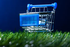 Shopping cart in grass royalty free stock image