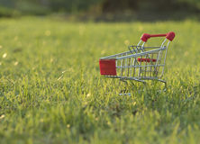 Shopping cart on grass in the evening Royalty Free Stock Photos