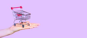 Shopping cart on hand with dollars Royalty Free Stock Photo